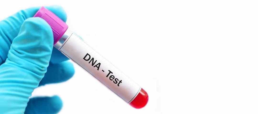 Projeto de lei prevê gratuidade para exames de DNA para identificar vínculo de paternidade