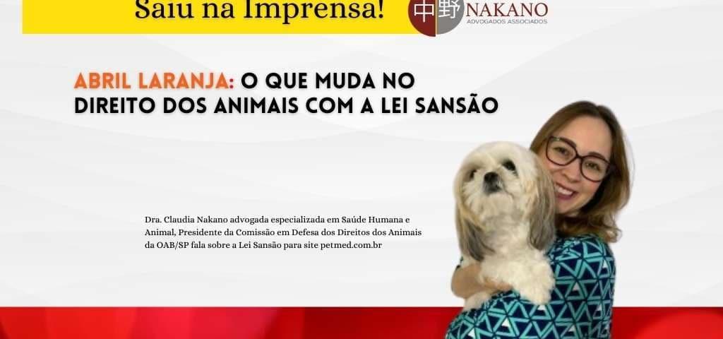 Abril Laranja: o que muda no direito dos animais com a Lei Sansão